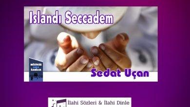 Photo of Islandı Seccadem Sözleri