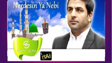 Photo of Nerdesin Ya Nebi İlahi Sözleri
